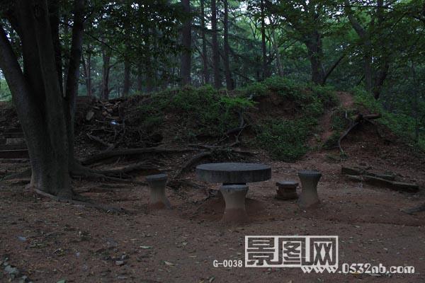 青岛中山公园丛林石凳