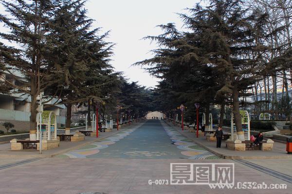 青岛儿童公园主道路