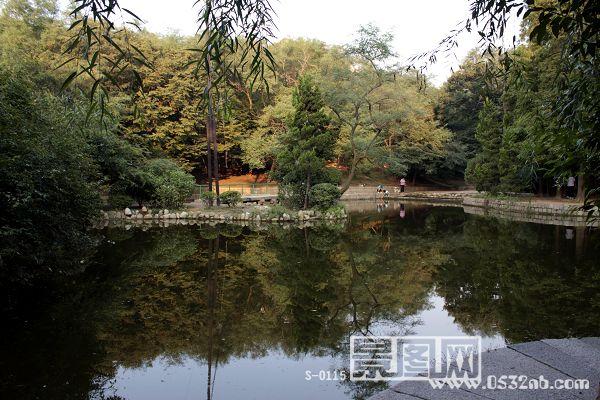青岛榉林公园人工湖2